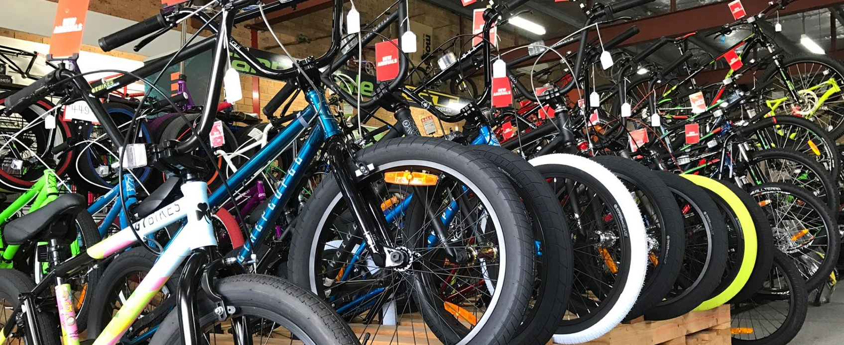 Bicycle: How to choose the type of bike?